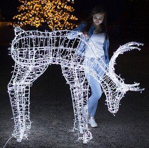 Светящийся олень Рудольф 120 см
